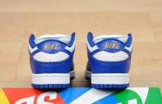 纯原公司级Supreme x Nike SB Dunk Low 货号:DH3228-100